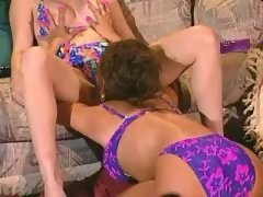 Lesbian Licking Lovely girls caress yummy pussies