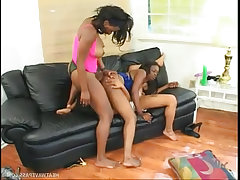 A trio of ebony babes gone wet and wild